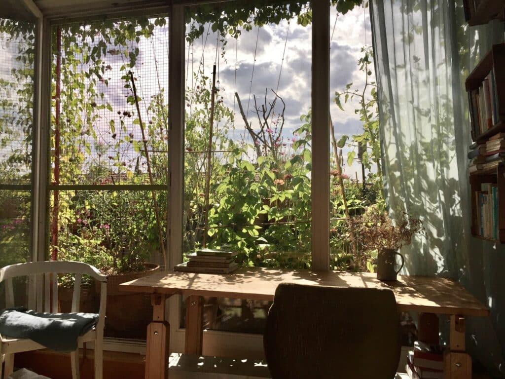 Tipps für einen wunderschönen, pflegeleichten Insekten und Tiere anziehenden Balkon