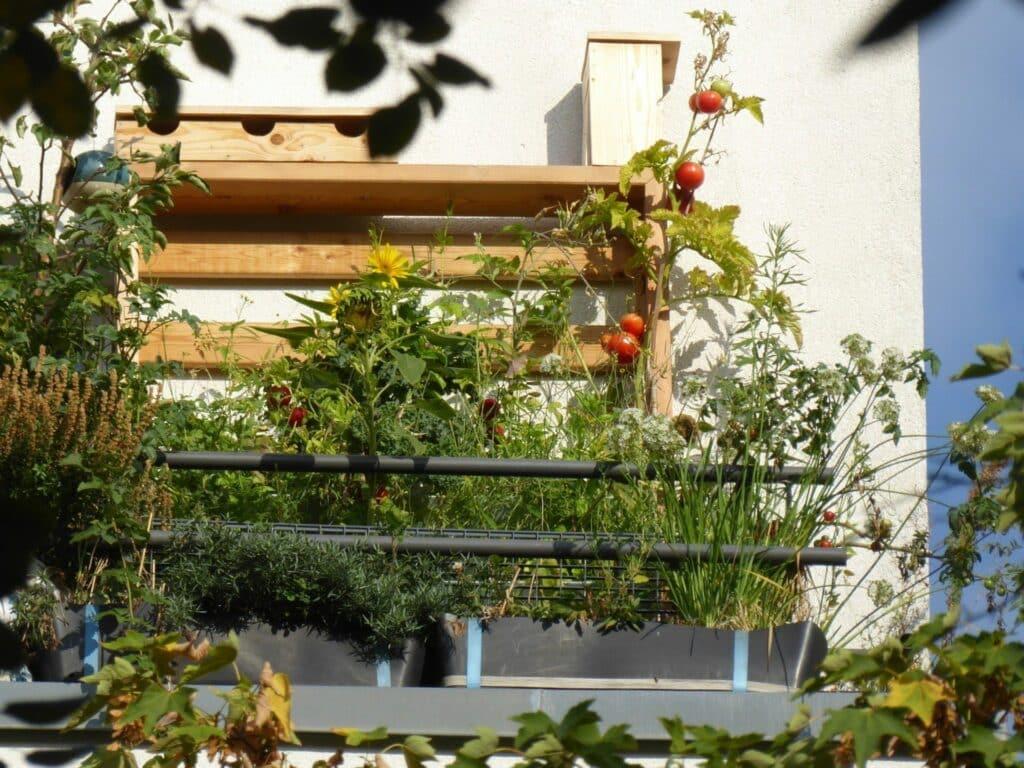 Vertikales gärtnern mit Vertikalbeet von HerbiosGarden - ein Blick auf den Balkon von der Straße nach oben gerichtet. Es ermöglicht eine ganzjährige Selbstversorgung mit Kräutern, Obst und Gemüse in Bio-Qualität.