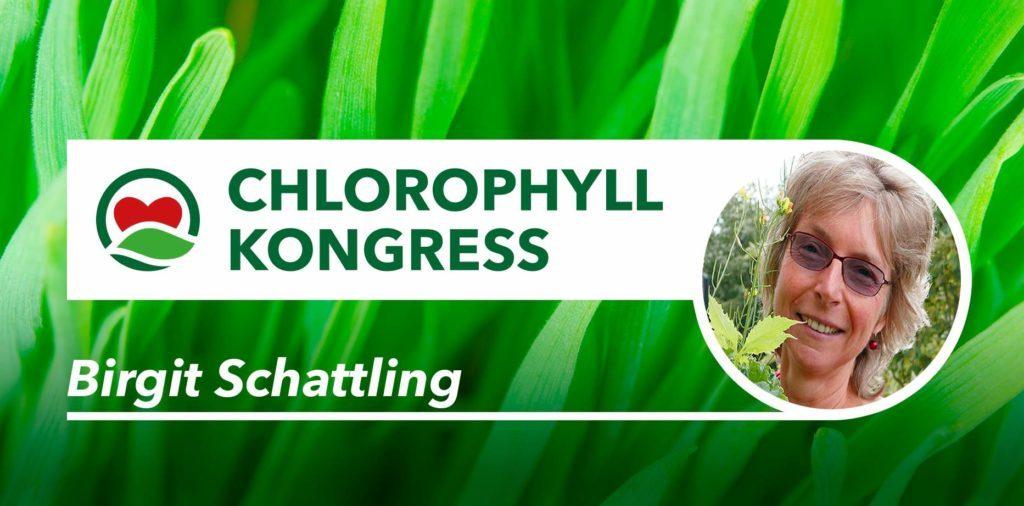 Kostenloser Zurück zur Natur-Online Kongress: Die wirkliche Ernährung für Körper, Geist und Seele liegt in der Natur. Wir können Chlorophyll ganz einfach und preiswert auf dem Balkon im Kübel oder auf dem Küchentisch anbauen.