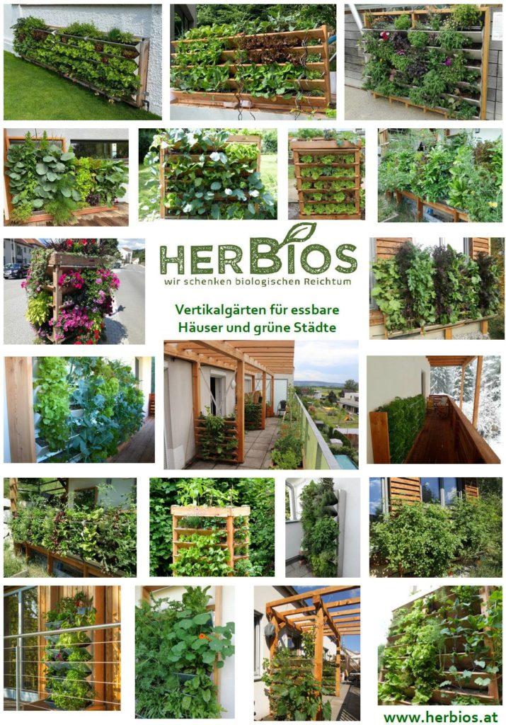 Vertikalgärten ermöglichen eine ganzjährige Selbstversorgung mit Kräutern, Obst und Gemüse in Bio-Qualität.