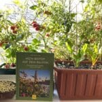 Vorträge zum Ratgeber-Buch, bei GU erschienen: Mein Biotop auf dem Balkon. Naturerlebnis und Ernteglück mitten in der Stadt. Insektenfreundliches Gärtnern. Anbau von Tomaten, Radieschen, Salat, Mangold, Grünkohl, Franzosenkraut und Microgreens auf dem Fensterbrett!