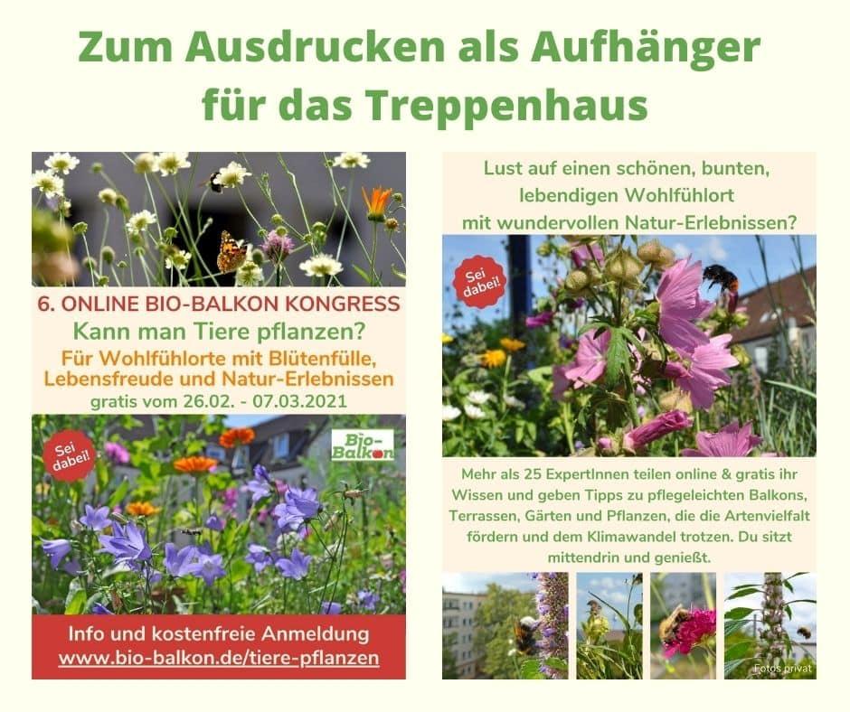 """Hier siehst Du den Flyer vom Online-Kongress Bio-Balkon """"Kann man Tiere pflanzen?"""" zum Verteilen im Haus und in Deinem Umfeld."""