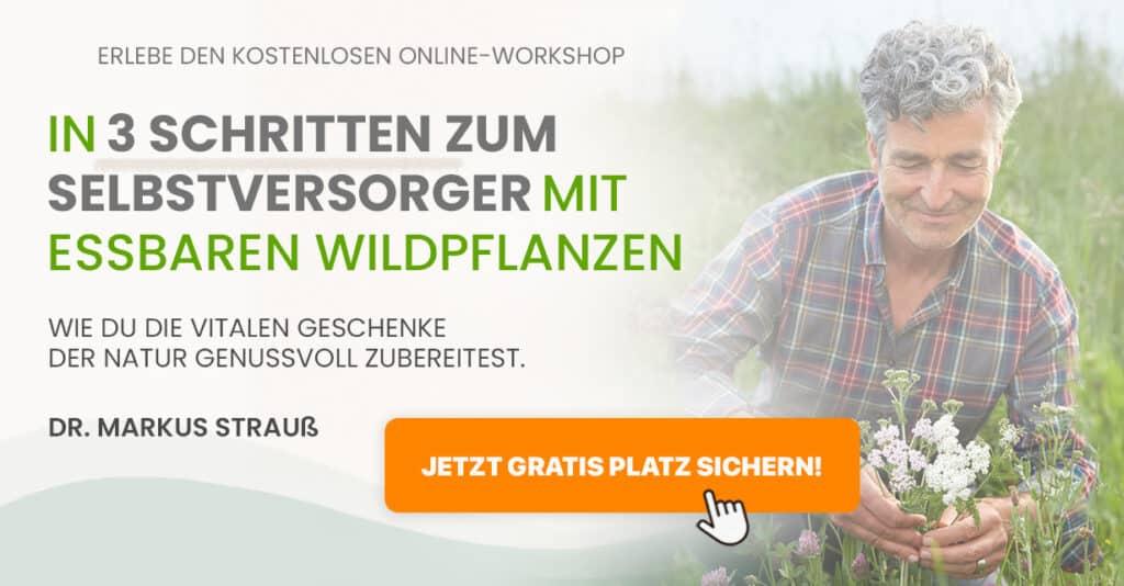 Hier geht es zum Workshop zur Selbstversorgung mit essbaren Wildpflanzen.
