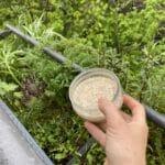 Wir fütterten unsere Ente auf unserem Balkon, damit sie sich an den Menschen gewöhnt.