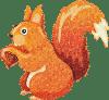 knautschohr Eichhörnchen Logo